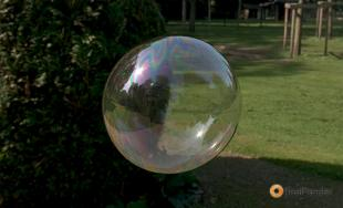 S Soapbubble Web
